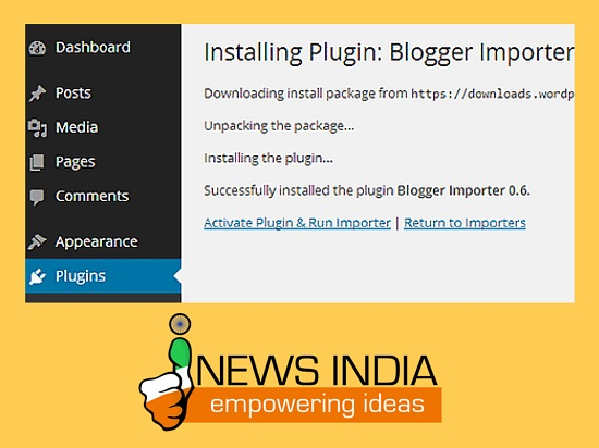 Activate Plugin & Run Importer