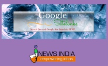 Google Sitelinks Search Box and Google Site Search in SERP!