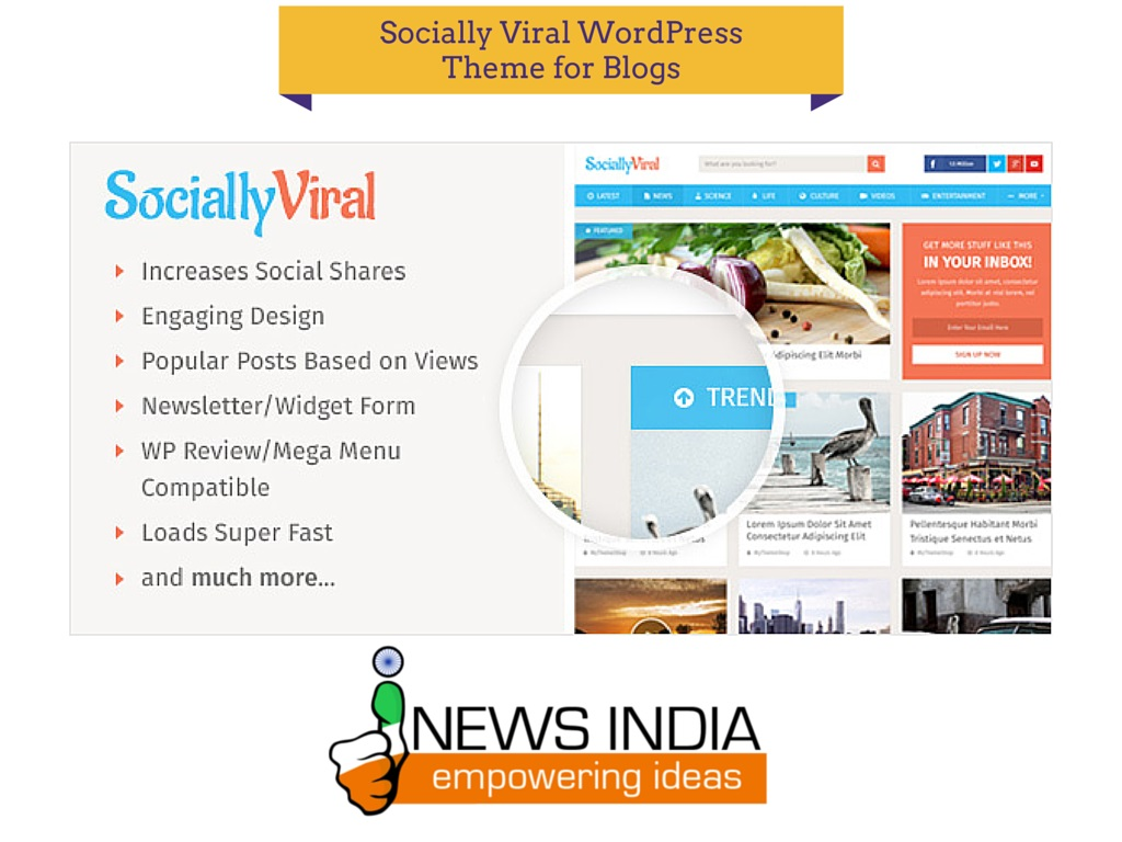 Socially Viral WordPress Theme for Blog