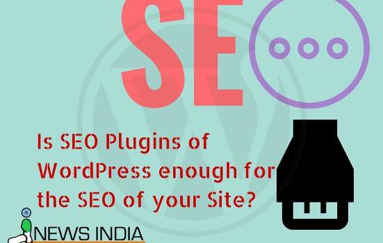Is SEO Plugins of WordPress enough for the SEO of your Site?