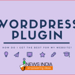How Do I Get the Best WordPress Plugin for My Website?
